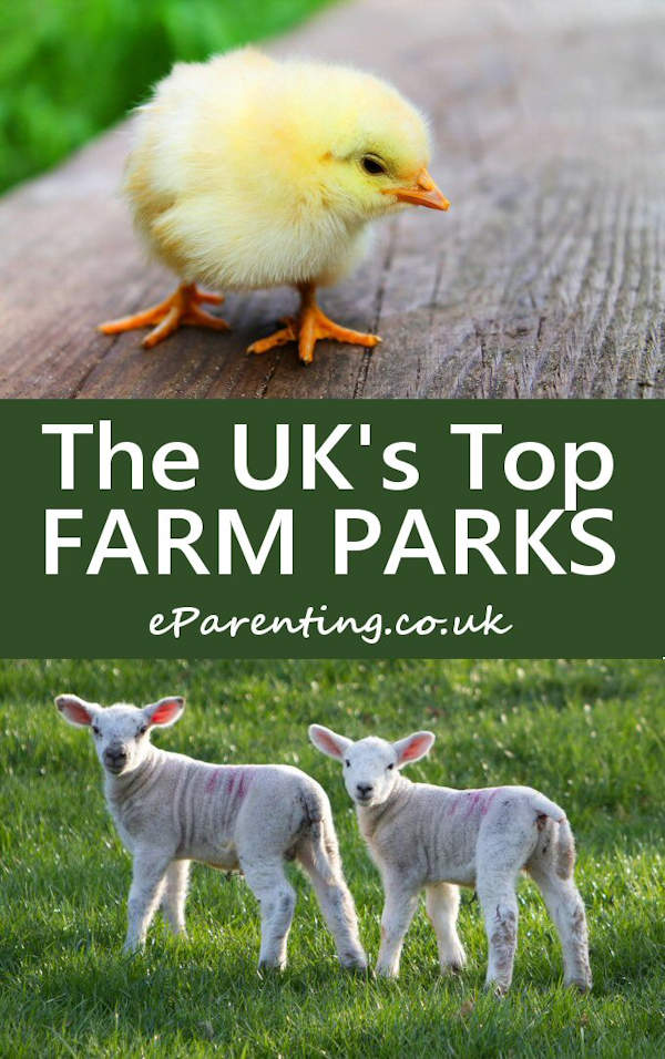 The UK's Top Farm Parks - Where to see farm animals close up in the UK
