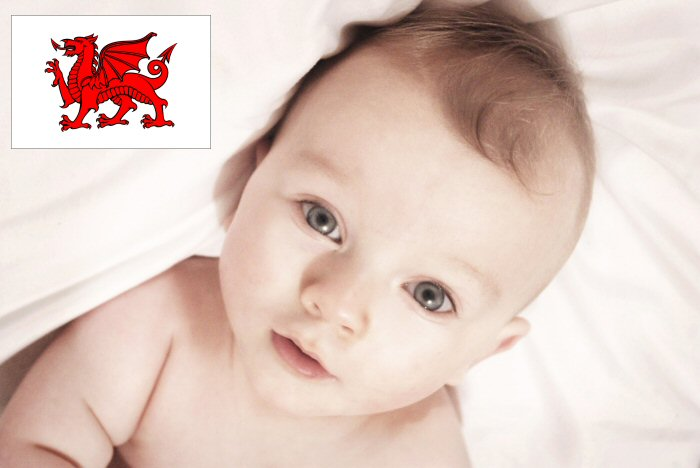 Welsh Baby Names